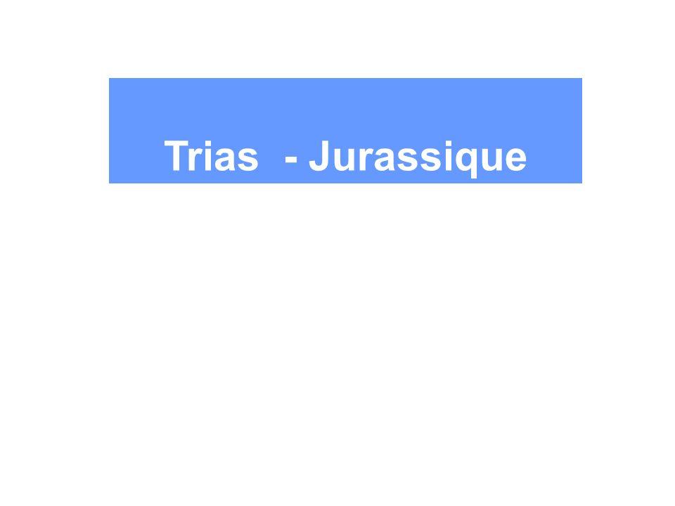Trias - Jurassique 3 Les grandes transitions