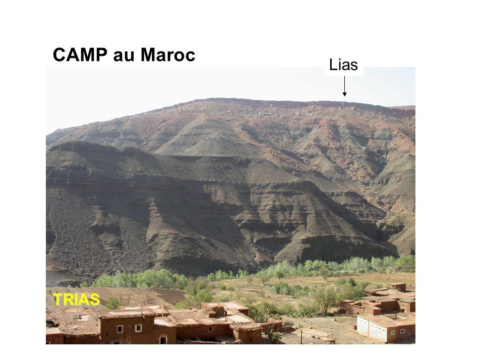 LiasTRIAS CAMP au Maroc 3 Les grandes transitions