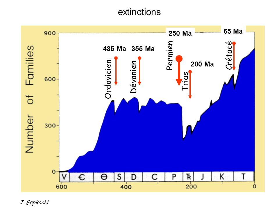 Imagerie du Géoide diamètre ~ 180 km couverture sédimentaire : < 1 km Reconstitution géodynamique à 65 Ma Impact de Chixculub Découverte à Terre : 1950 Premier forage océanique (Chixculub Scientific Drilling Project): 2001 3 Les grandes transitions METEORITE ?