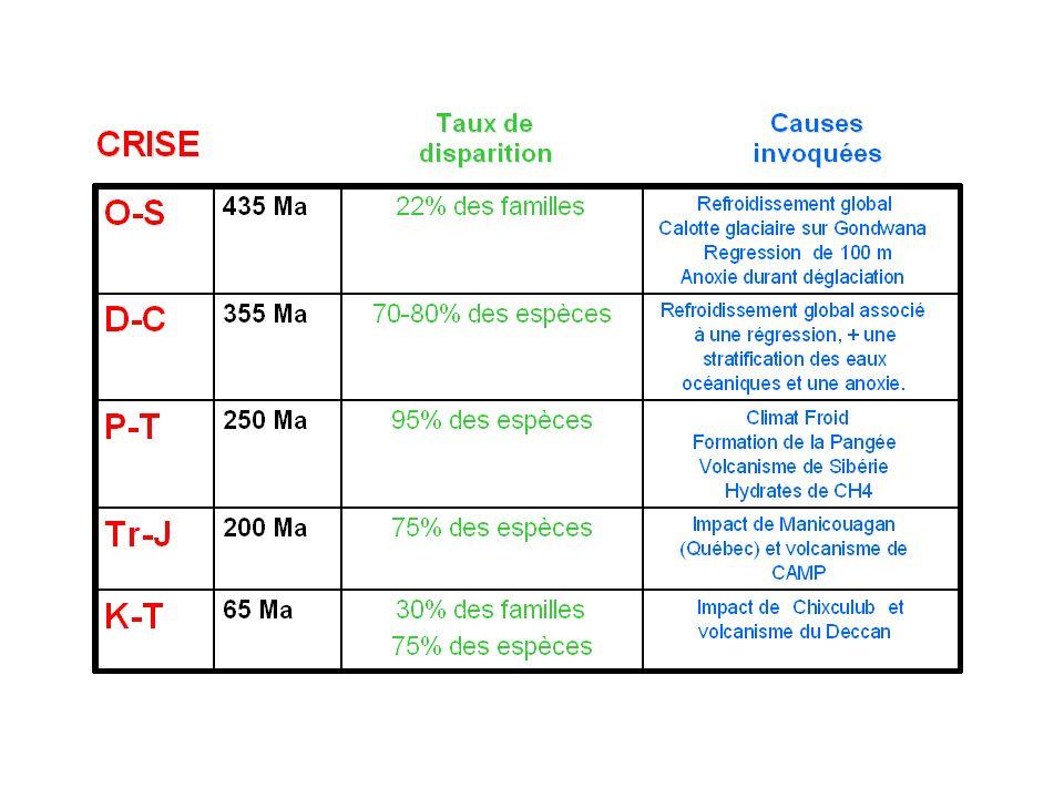 Répartition des Qz choqués, anomalies en Ir, microtectites, tsunamis 3 Les grandes transitions METEORITE .