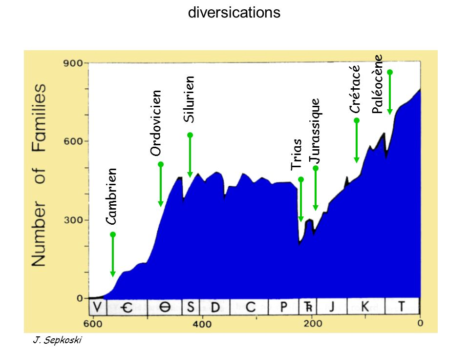 Courtillot & Renne, 2003 5% erreur à 200 Ma 3 Les grandes transitions Trapps : indices