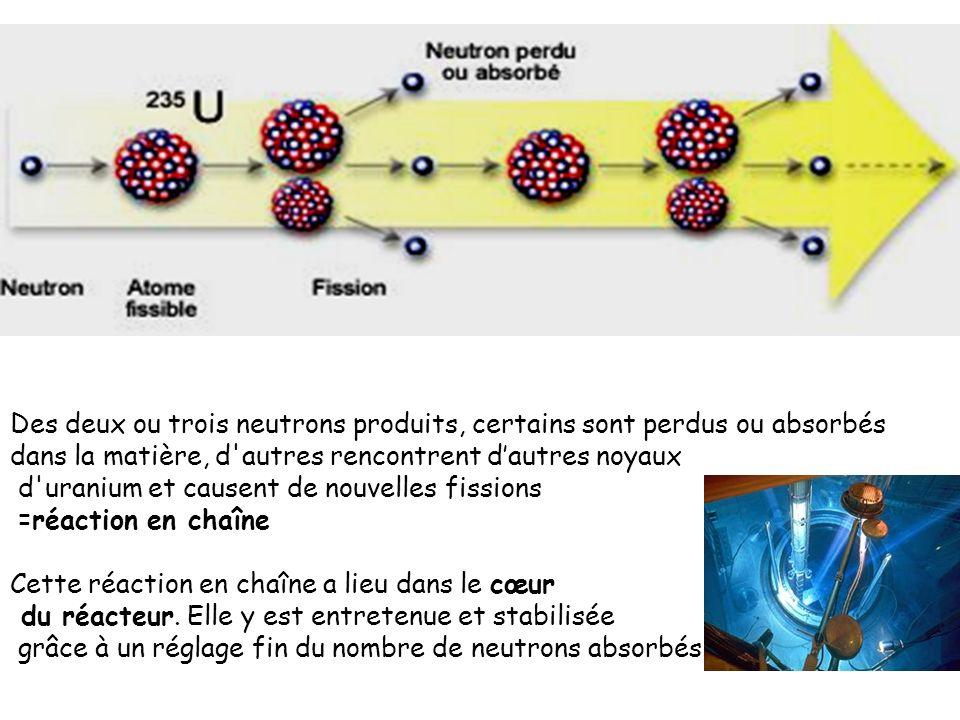 Des deux ou trois neutrons produits, certains sont perdus ou absorbés dans la matière, d'autres rencontrent dautres noyaux d'uranium et causent de nou