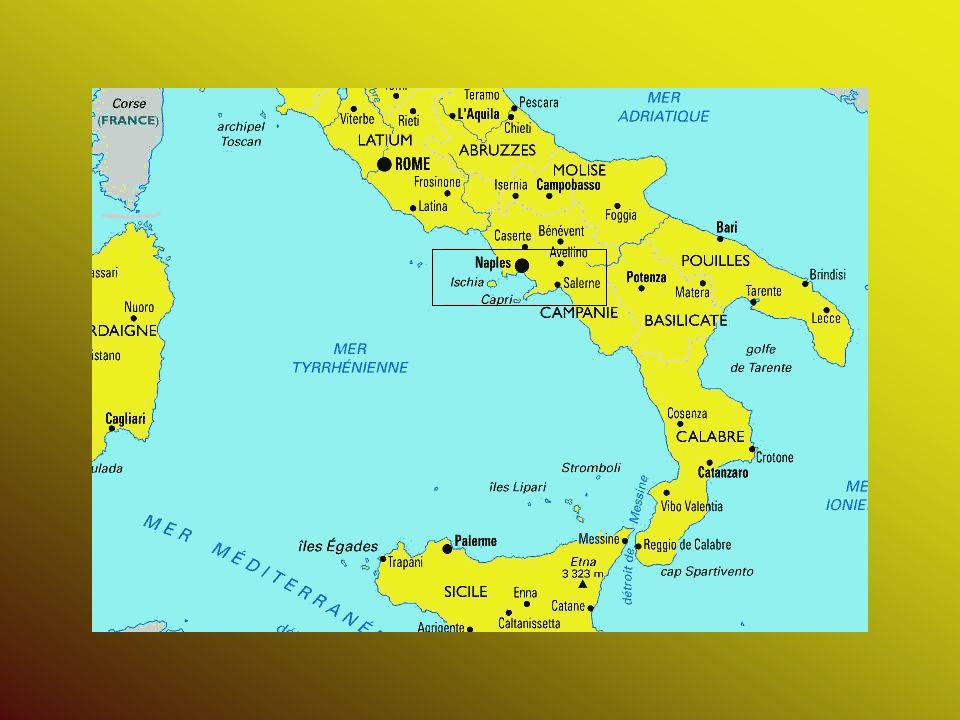 Introduction Vésuve : - à 8 km de Naples - 1277 m daltitude - volcan européen le plus actif pendant 3 siècles Éruption de 79 : - nuit du 24 au 25 août 79 - récit de Pline le Jeune = 1 er témoignage historique dune éruption explosive - une des plus marquantes catastrophe naturelle documentée par lHomme - en 10h : Herculanum et Pompéi entièrement dévastées