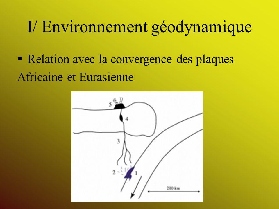 I/ Environnement géodynamique Relation avec la convergence des plaques Africaine et Eurasienne