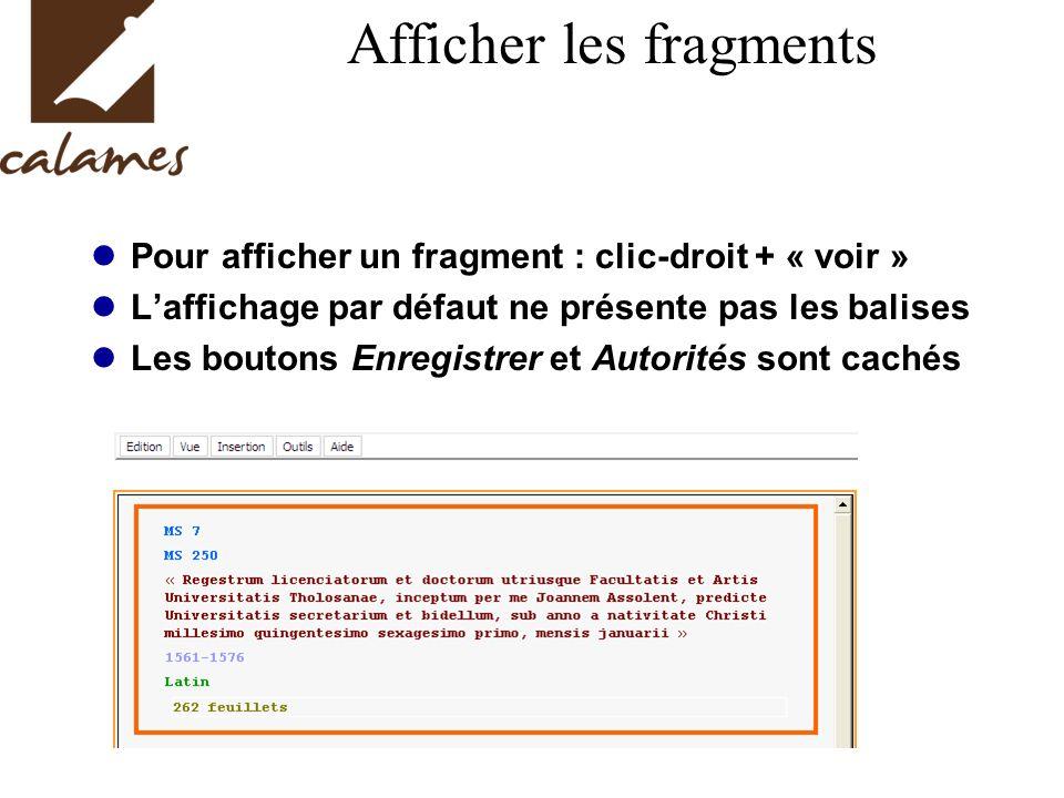Afficher les fragments Pour afficher un fragment : clic-droit + « voir » Laffichage par défaut ne présente pas les balises Les boutons Enregistrer et Autorités sont cachés