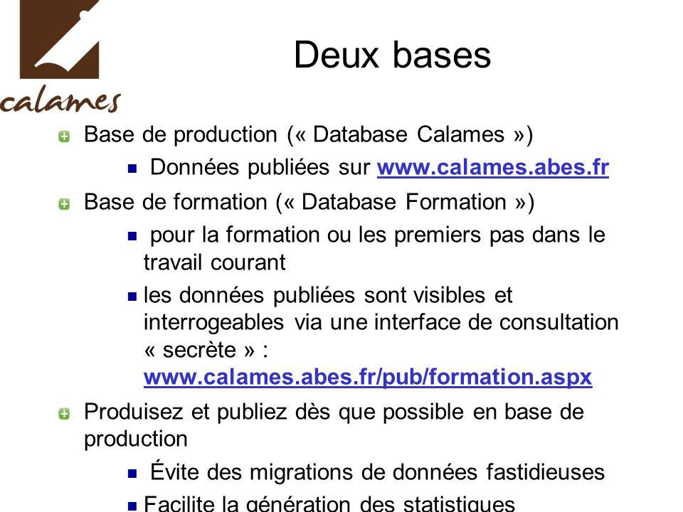 Deux bases Base de production (« Database Calames ») Données publiées sur www.calames.abes.fr Base de formation (« Database Formation ») pour la forma