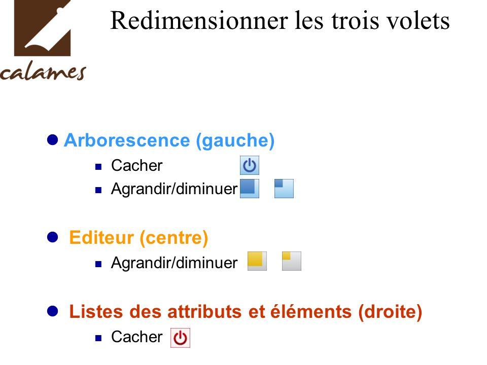 Redimensionner les trois volets Arborescence (gauche) Cacher Agrandir/diminuer Editeur (centre) Agrandir/diminuer Listes des attributs et éléments (droite) Cacher