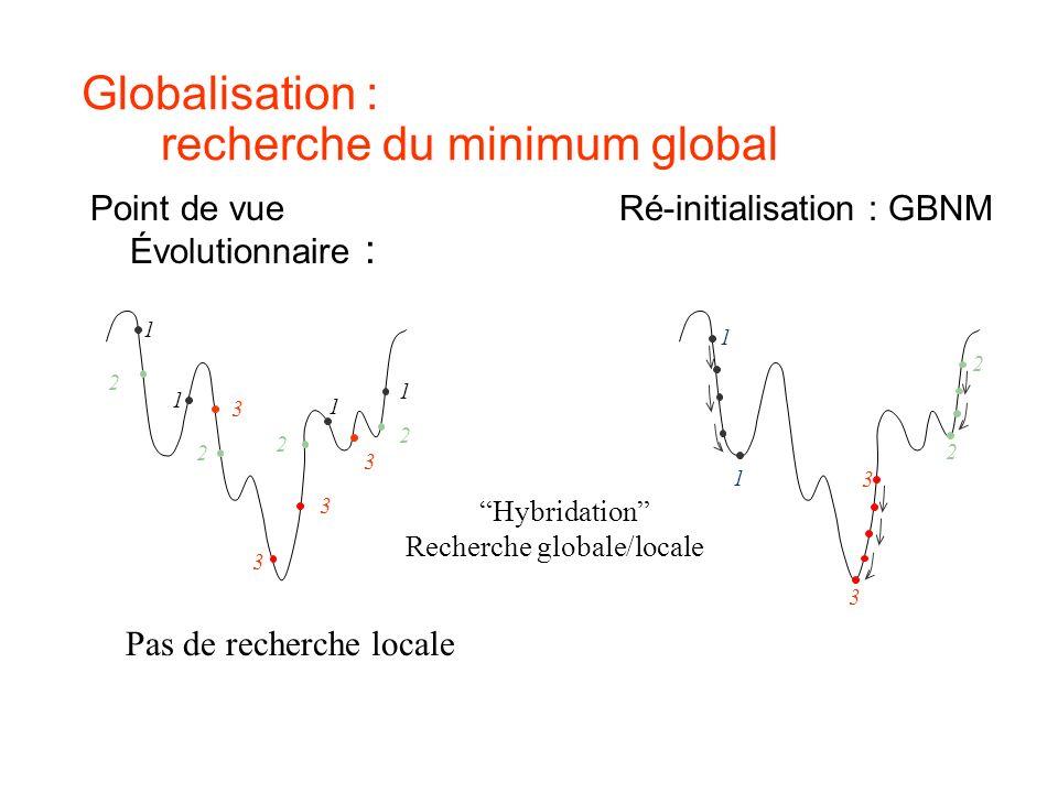 Globalisation : recherche du minimum global Point de vueRé-initialisation : GBNM Évolutionnaire : Pas de recherche locale Hybridation Recherche global