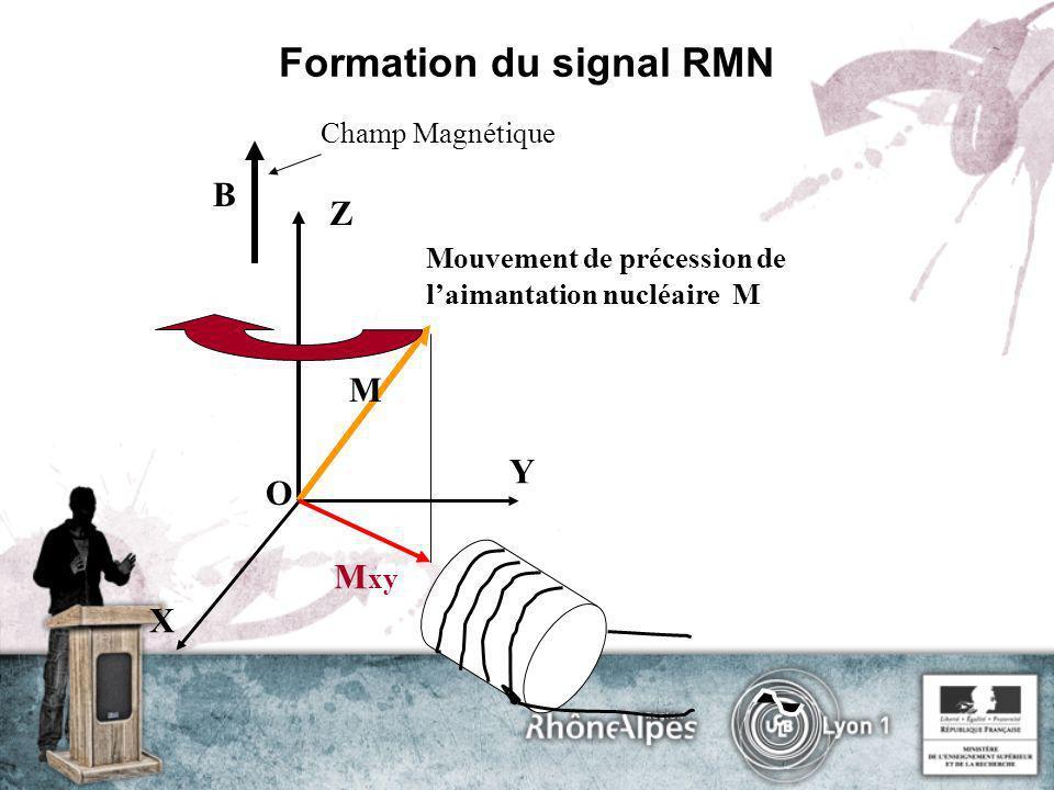 Formation du signal RMN Champ Magnétique Z Mouvement de précession de laimantation nucléaire M B X Y O M xy M