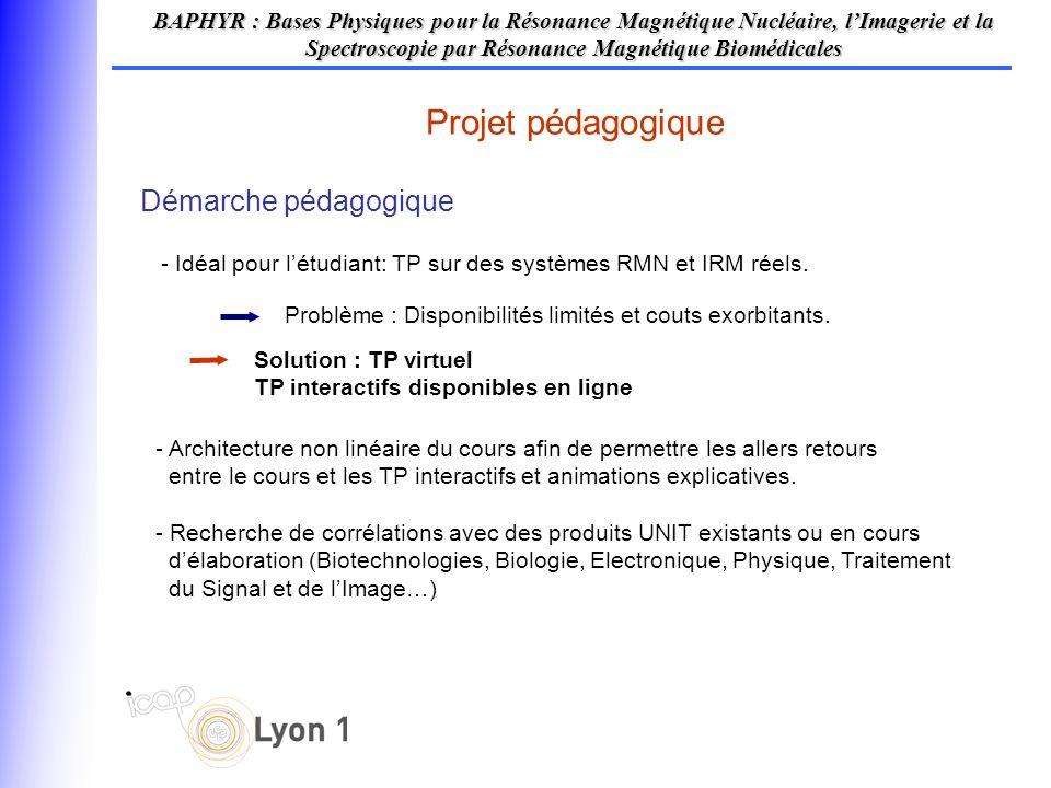 Projet pédagogique BAPHYR : Bases Physiques pour la Résonance Magnétique Nucléaire, lImagerie et la Spectroscopie par Résonance Magnétique Biomédicales Choix de présentation Animations flash interactives - 2 TP concernant un point complexe et source dincompréhension du cours de RMN - Ces TP sont une première étape dans la création dune série plus complète de TP couvrant lintégralité des sujets du cours.