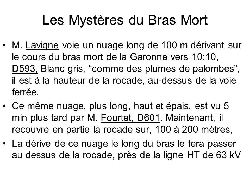 Les Mystères du Bras Mort M. Lavigne voie un nuage long de 100 m dérivant sur le cours du bras mort de la Garonne vers 10:10, D593, Blanc gris, comme