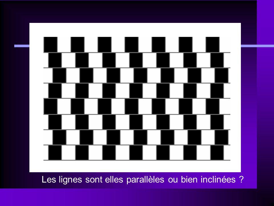 Les lignes sont elles parallèles ou bien inclinées ?