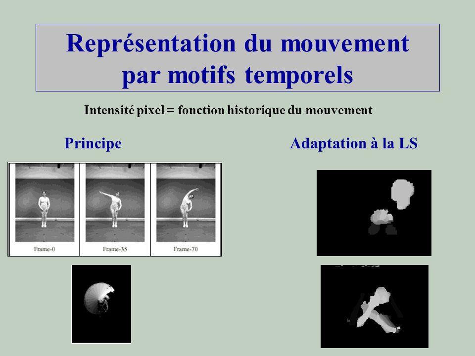 Représentation du mouvement par motifs temporels Intensité pixel = fonction historique du mouvement PrincipeAdaptation à la LS