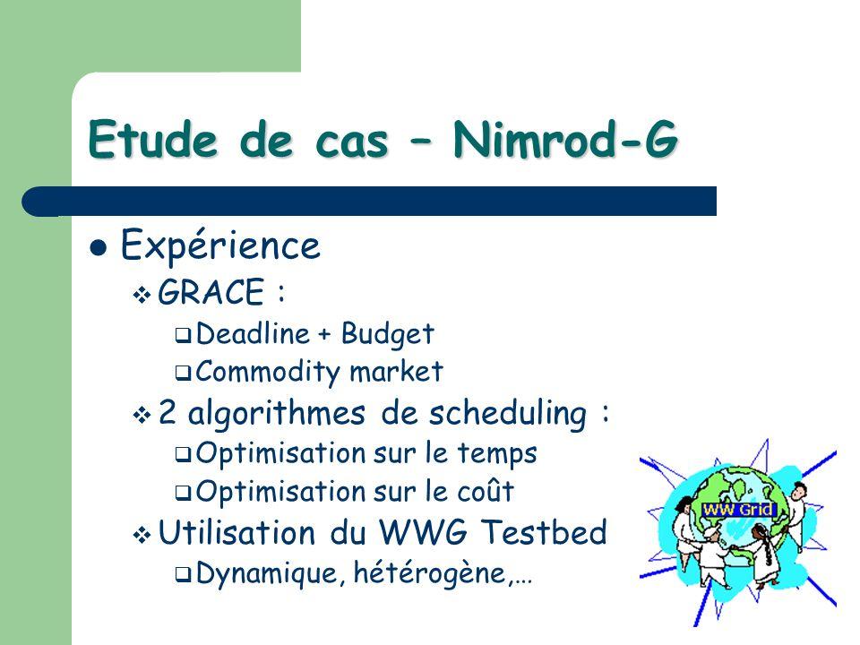 Expérience GRACE : Deadline + Budget Commodity market 2 algorithmes de scheduling : Optimisation sur le temps Optimisation sur le coût Utilisation du WWG Testbed Dynamique, hétérogène,…