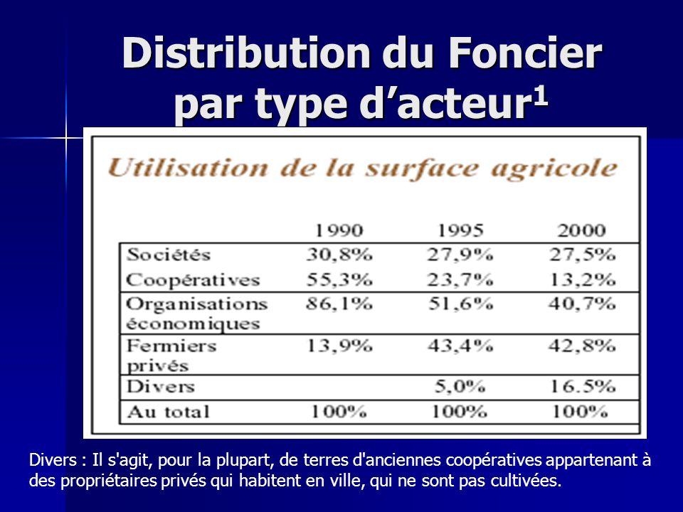 Distribution du Foncier par type dacteur 1 Divers : Il s'agit, pour la plupart, de terres d'anciennes coopératives appartenant à des propriétaires pri