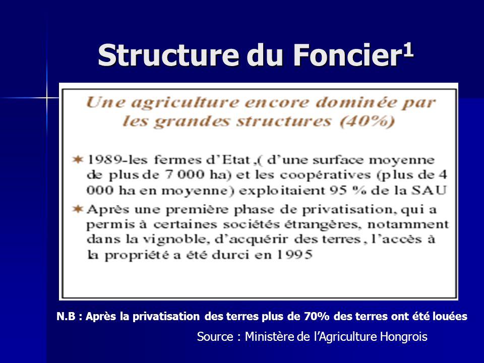 Structure du Foncier 1 Source : Ministère de lAgriculture Hongrois N.B : Après la privatisation des terres plus de 70% des terres ont été louées