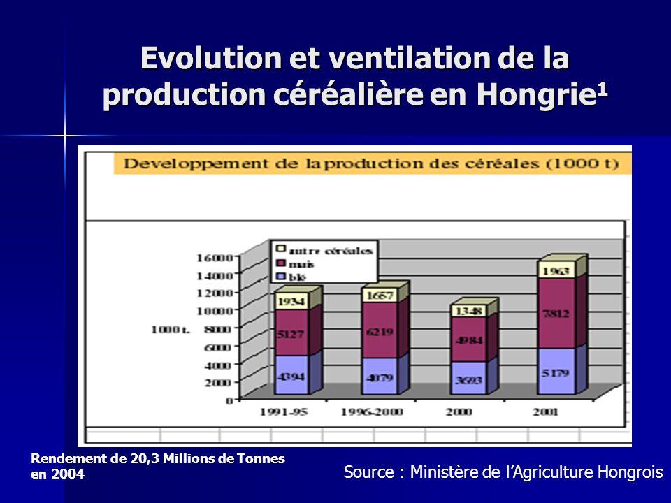 Evolution et ventilation de la production céréalière en Hongrie 1 Source : Ministère de lAgriculture Hongrois Rendement de 20,3 Millions de Tonnes en