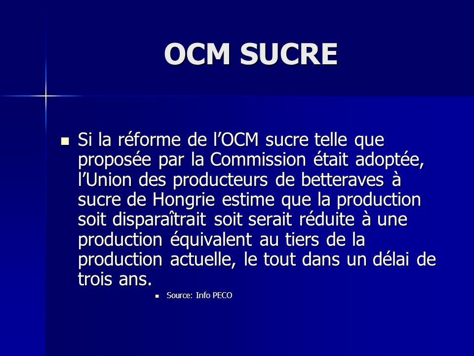 OCM SUCRE Si la réforme de lOCM sucre telle que proposée par la Commission était adoptée, lUnion des producteurs de betteraves à sucre de Hongrie esti