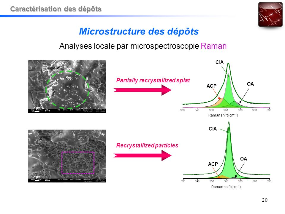 20 2 µm Partially recrystallized splat Recrystallized particles Microstructure des dépôts Analyses locale par microspectroscopie Raman ACP ClA OA ACP 930940950960970980990 Raman shift (cm -1 ) 930940950960970980990 Raman shift (cm -1 ) OA Caractérisation des dépôts