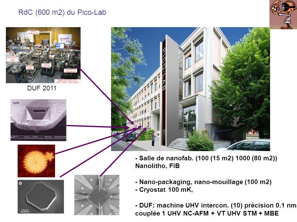 RdC (600 m2) du Pico-Lab UHV FIM - Salle de nanofab. (100 (15 m2) 1000 (80 m2)) Nanolitho, FIB - Nano-packaging, nano-mouillage (100 m2) - Cryostat 10