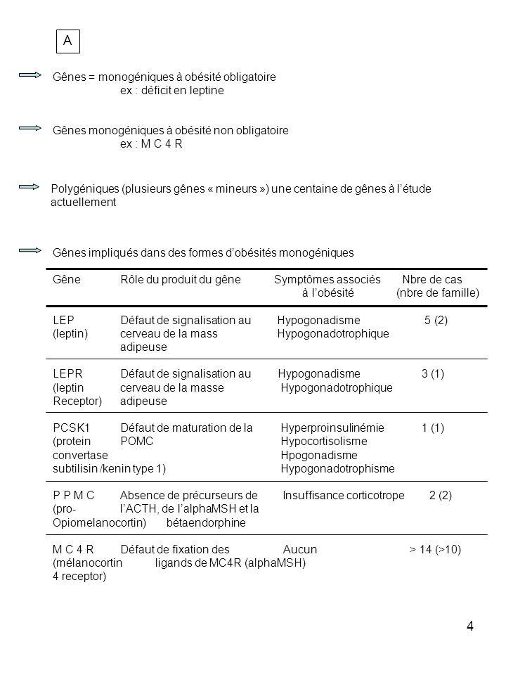 4 A Gênes = monogéniques à obésité obligatoire ex : déficit en leptine Gênes monogéniques à obésité non obligatoire ex : M C 4 R Polygéniques (plusieu