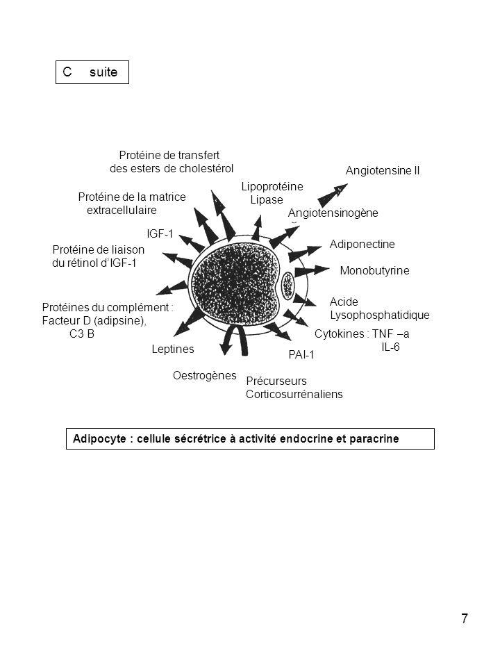 7 C suite Angiotensine II Angiotensinogène Adiponectine Monobutyrine Acide Lysophosphatidique Cytokines : TNF –a IL-6 PAI-1 Précurseurs Corticosurréna