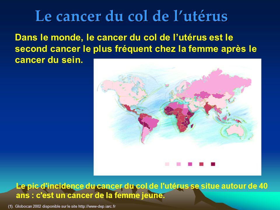 Le cancer du col de lutérus (1). Globocan 2002 disponible sur le site http://www-dep.iarc.fr Dans le monde, le cancer du col de lutérus est le second