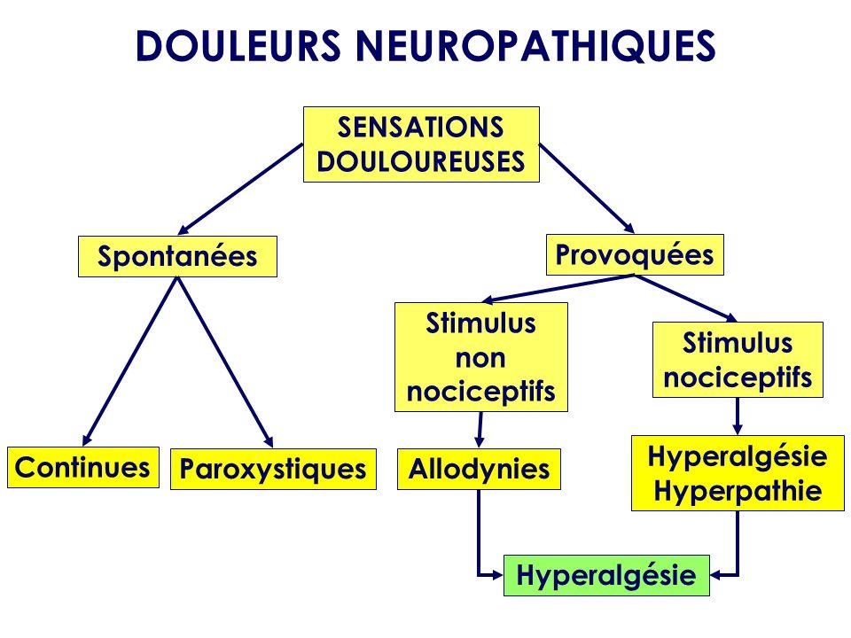 SENSATIONS DOULOUREUSES Spontanées Paroxystiques DOULEURS NEUROPATHIQUES Continues Stimulus nociceptifs Hyperalgésie Hyperpathie Provoquées Stimulus n