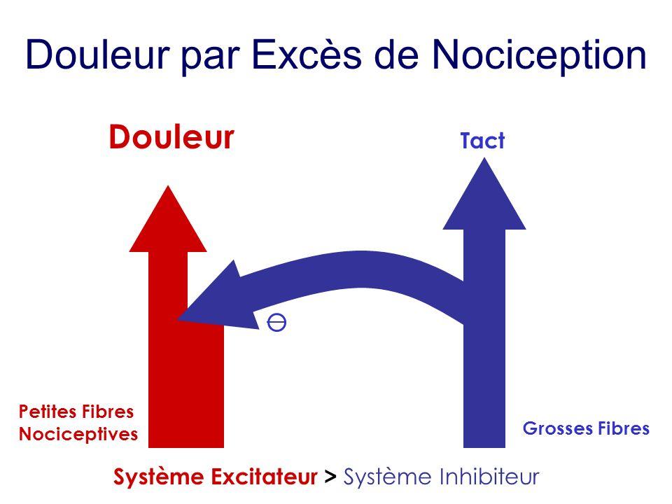 Douleur par Excès de Nociception Douleur Petites Fibres Nociceptives Tact Grosses Fibres Système Excitateur > Système Inhibiteur