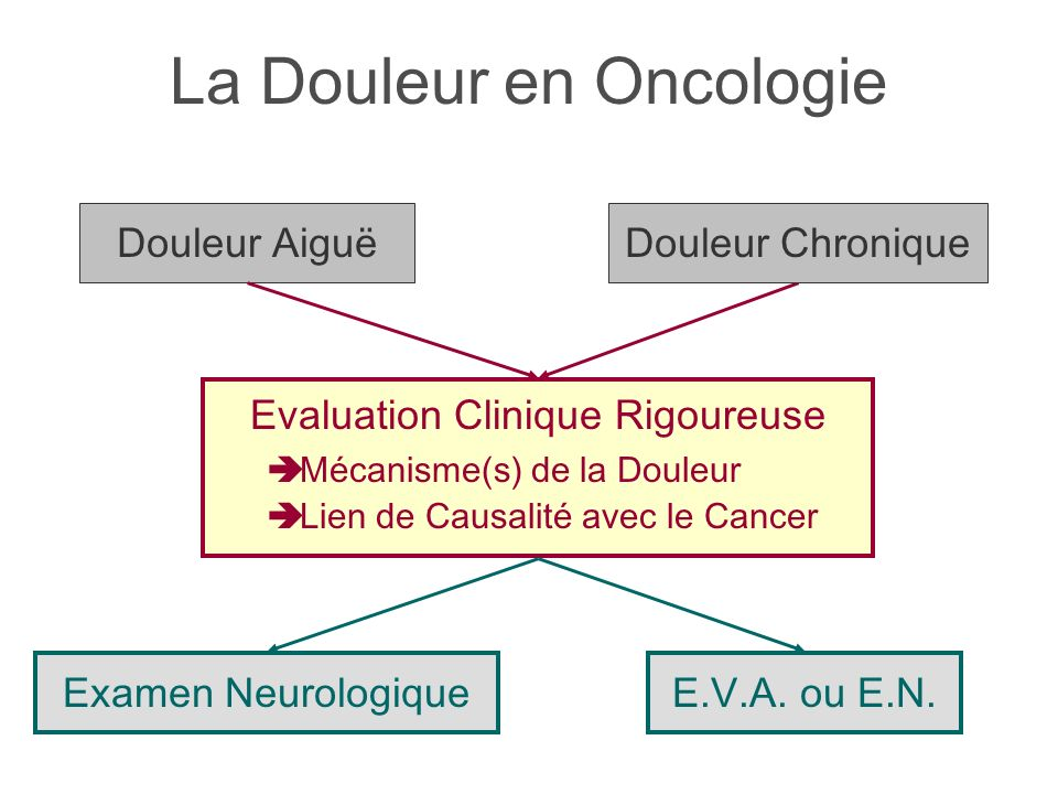 La Douleur en Oncologie Douleur Aiguë Evaluation Clinique Rigoureuse Mécanisme(s) de la Douleur Lien de Causalité avec le Cancer Examen NeurologiqueE.