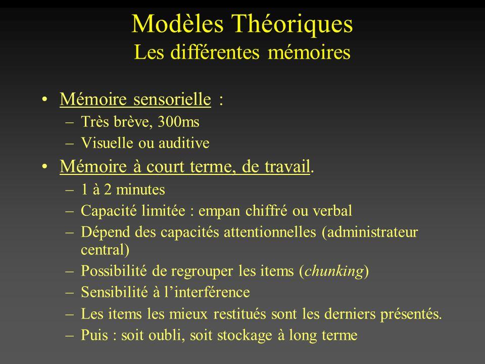 Modèles Théoriques Les différentes mémoires Mémoire sensorielle : –Très brève, 300ms –Visuelle ou auditive Mémoire à court terme, de travail. –1 à 2 m