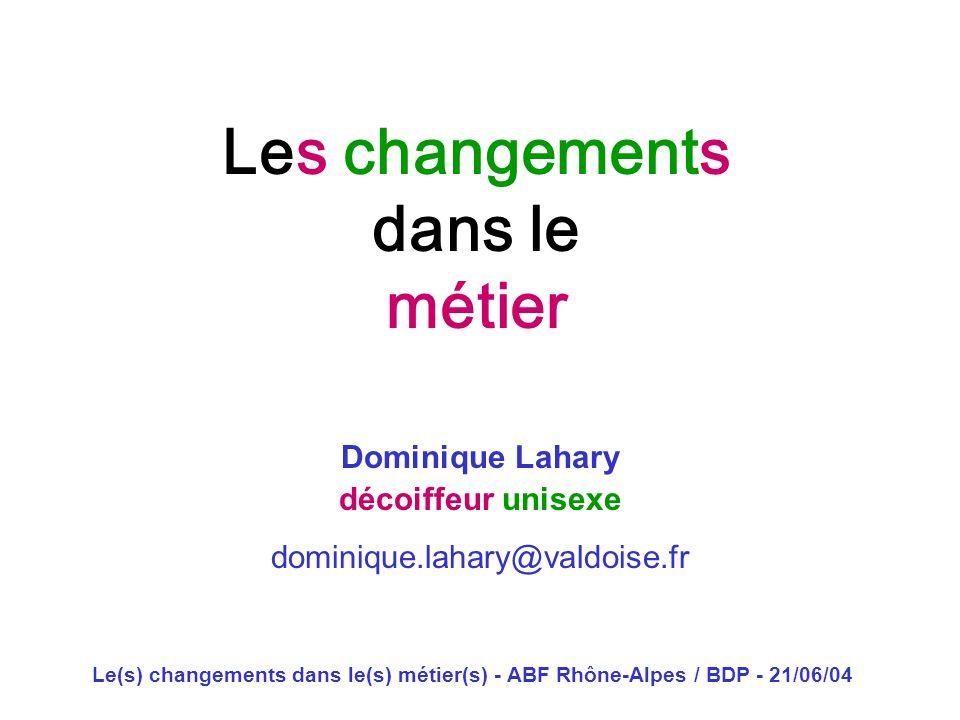 Le(s) changements dans le(s) métier(s) - ABF Rhône-Alpes / BDP - 21/06/04 Les changements dans le métier Dominique Lahary décoiffeur unisexe dominique