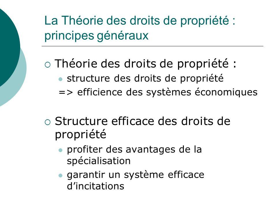 La Théorie des droits de propriété : principes généraux Théorie des droits de propriété : structure des droits de propriété => efficience des systèmes