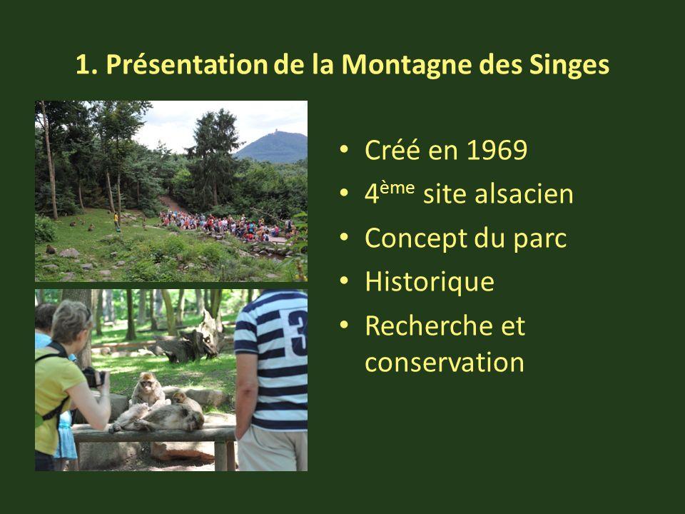 1. Présentation de la Montagne des Singes Créé en 1969 4 ème site alsacien Concept du parc Historique Recherche et conservation