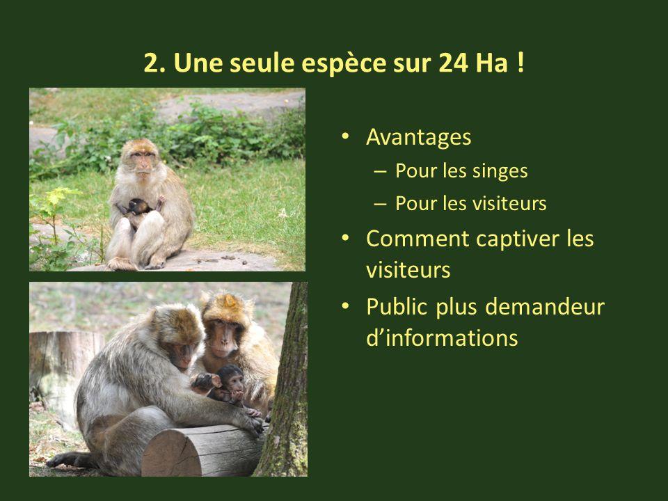 2. Une seule espèce sur 24 Ha .