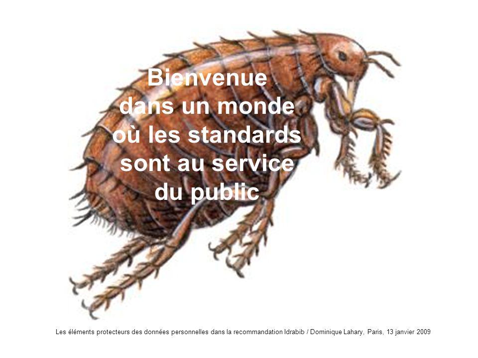 Les éléments protecteurs des données personnelles dans la recommandation Idrabib / Dominique Lahary, Paris, 13 janvier 2009 Bienvenue dans un monde où