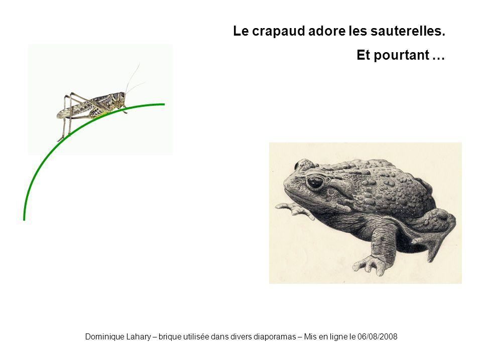 Dominique Lahary – brique utilisée dans divers diaporamas – Mis en ligne le 06/08/2008 Le crapaud adore les sauterelles. Et pourtant …