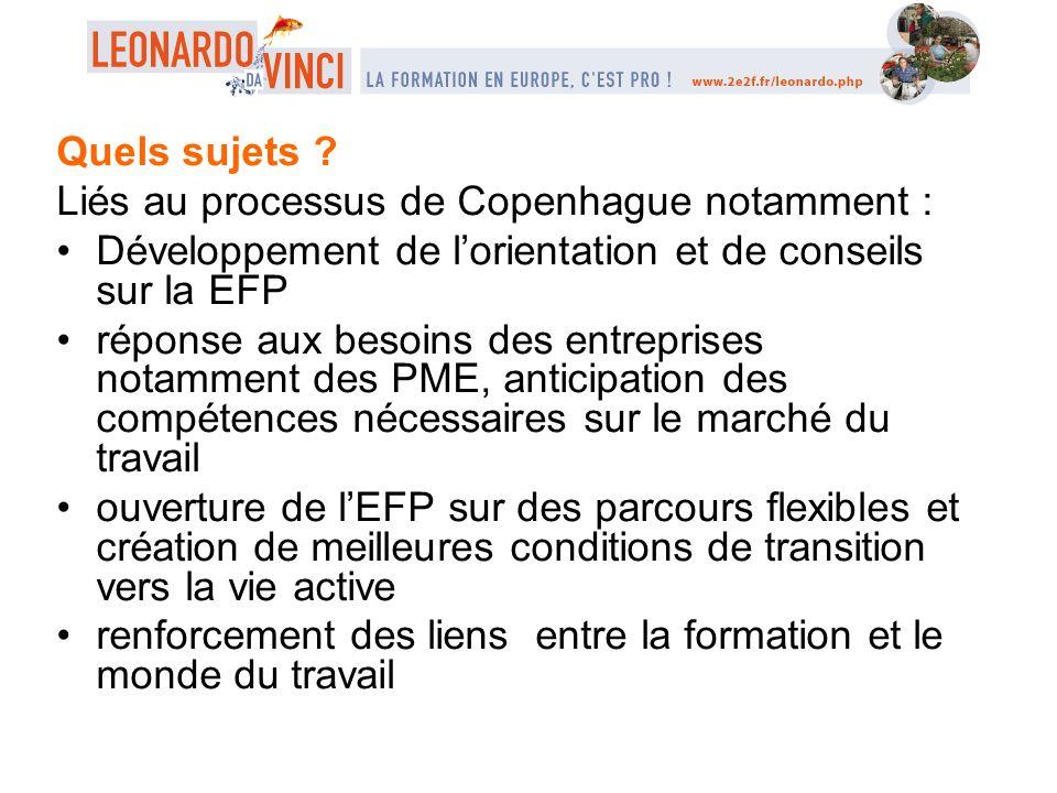 Quels sujets ? Liés au processus de Copenhague notamment : Développement de lorientation et de conseils sur la EFP réponse aux besoins des entreprises