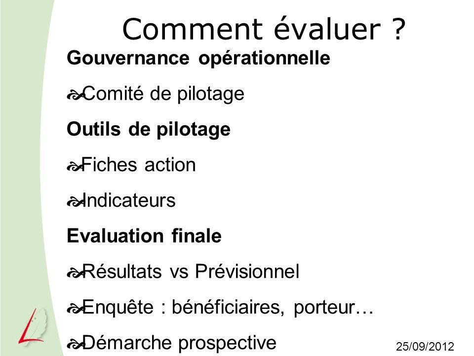 Comment évaluer ? Gouvernance opérationnelle Comité de pilotage Outils de pilotage Fiches action Indicateurs Evaluation finale Résultats vs Prévisionn