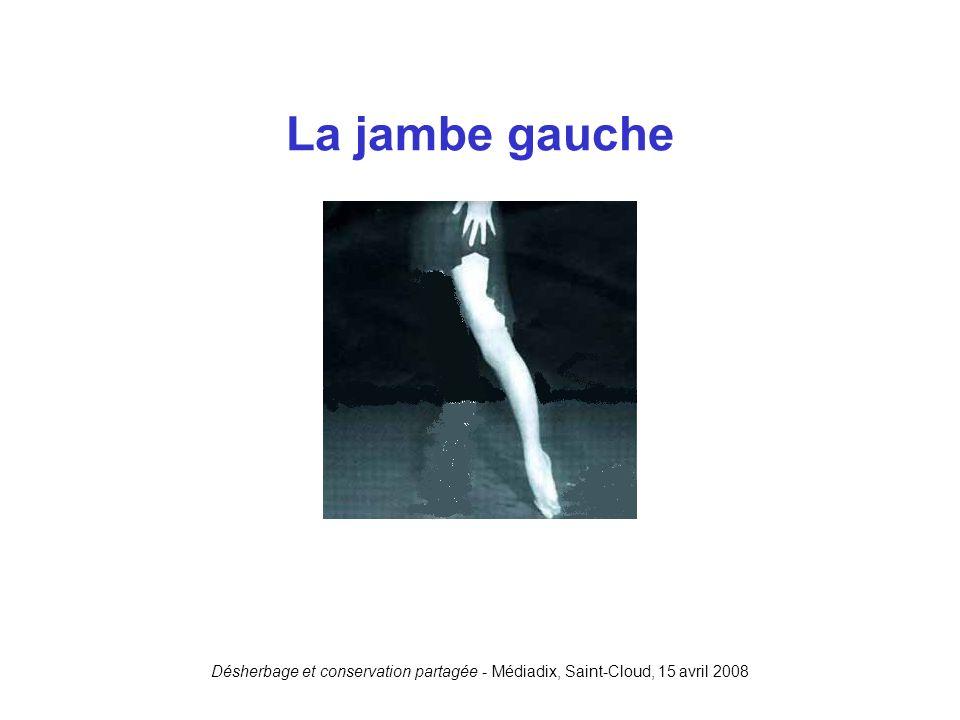 Désherbage et conservation partagée - Médiadix, Saint-Cloud, 15 avril 2008 La jambe gauche