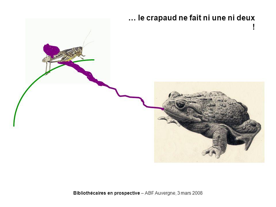 Bibliothécaires en prospective – ABF Auvergne, 3 mars 2008 … le crapaud ne fait ni une ni deux !