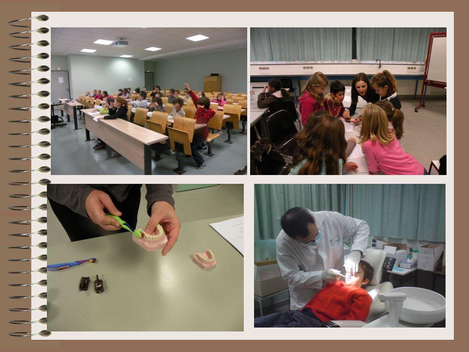Cinquième point: La prévention et lhygiène bucco dentaire En partenariat avec la faculté dOdontologie de Montpellier,