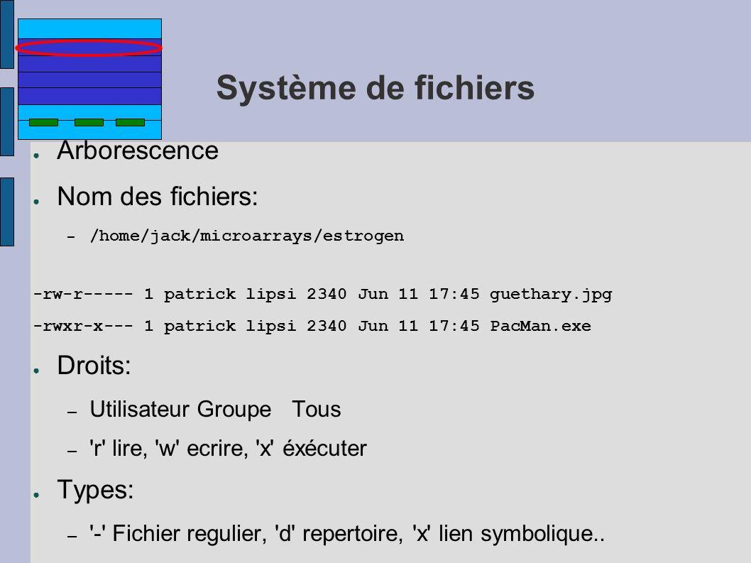 Système de fichiers Arborescence Nom des fichiers: – /home/jack/microarrays/estrogen -rw-r----- 1 patrick lipsi 2340 Jun 11 17:45 guethary.jpg -rwxr-x