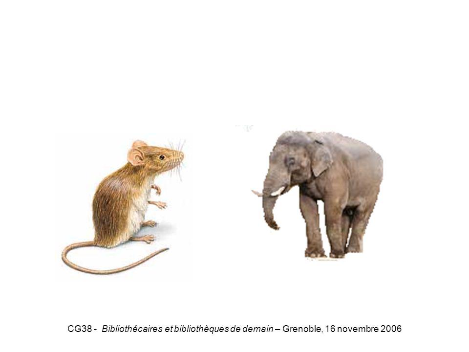 CG38 - Bibliothécaires et bibliothèques de demain – Grenoble, 16 novembre 2006 Souris-Eléphant