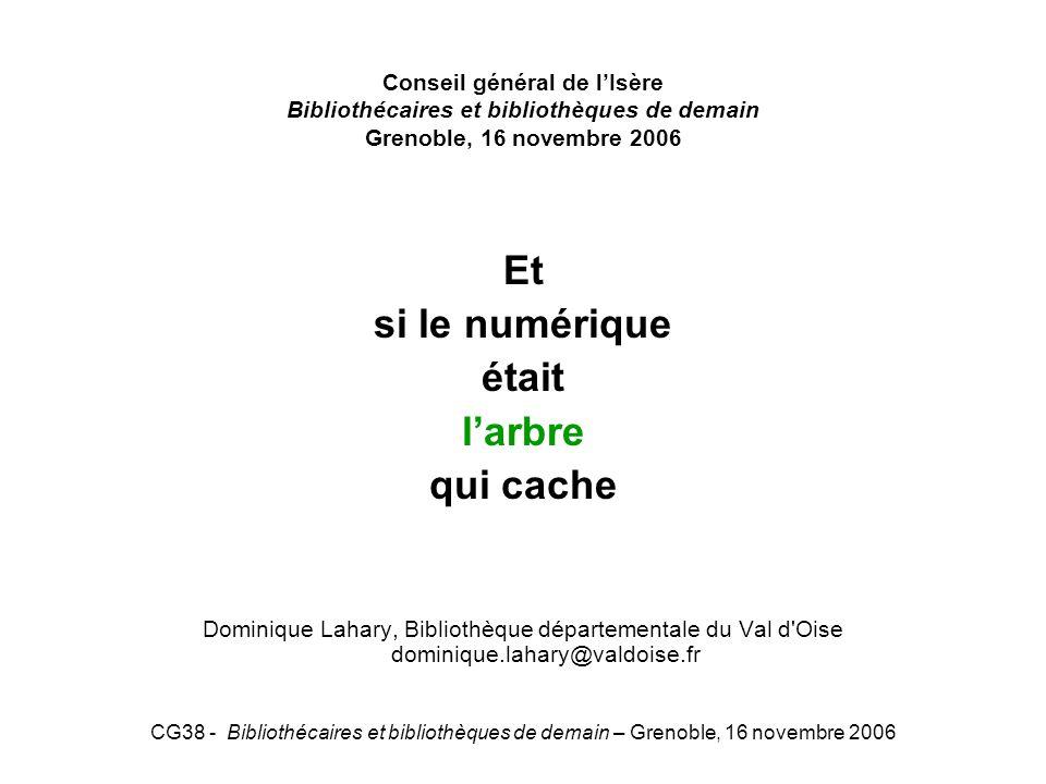 CG38 - Bibliothécaires et bibliothèques de demain – Grenoble, 16 novembre 2006 Conseil général de lIsère Bibliothécaires et bibliothèques de demain Gr