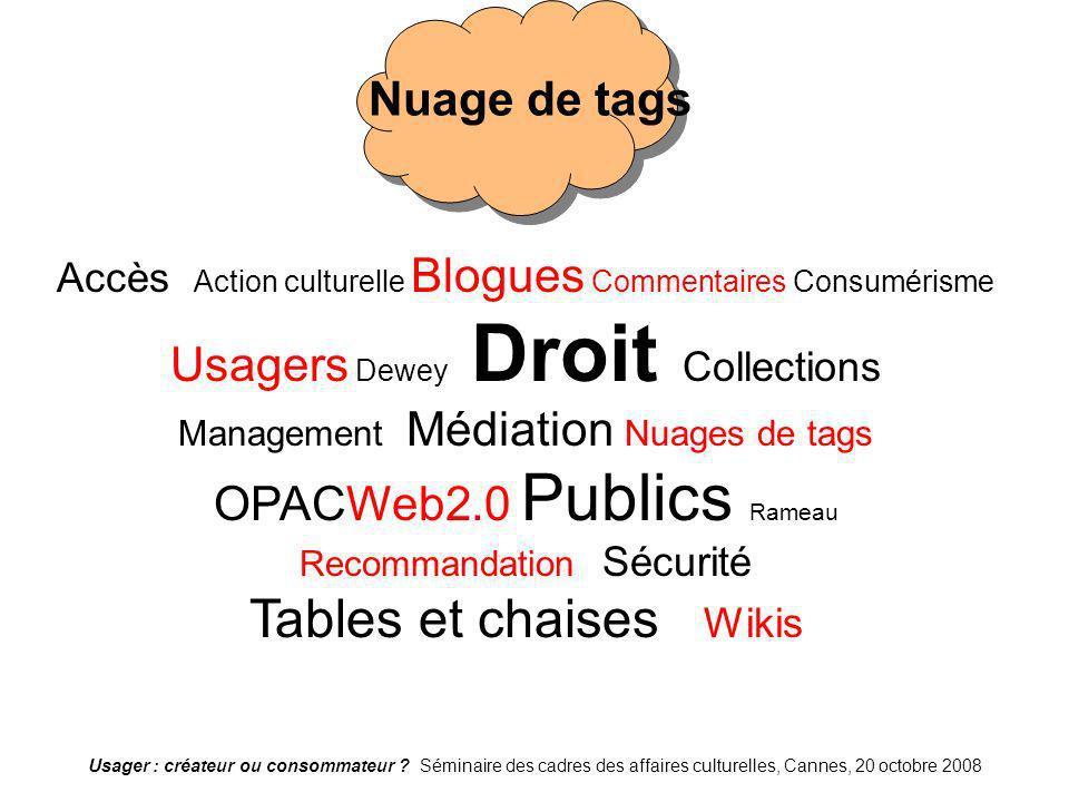 Usager : créateur ou consommateur ? Séminaire des cadres des affaires culturelles, Cannes, 20 octobre 2008 Nuage de tags Accès Action culturelle Blogu