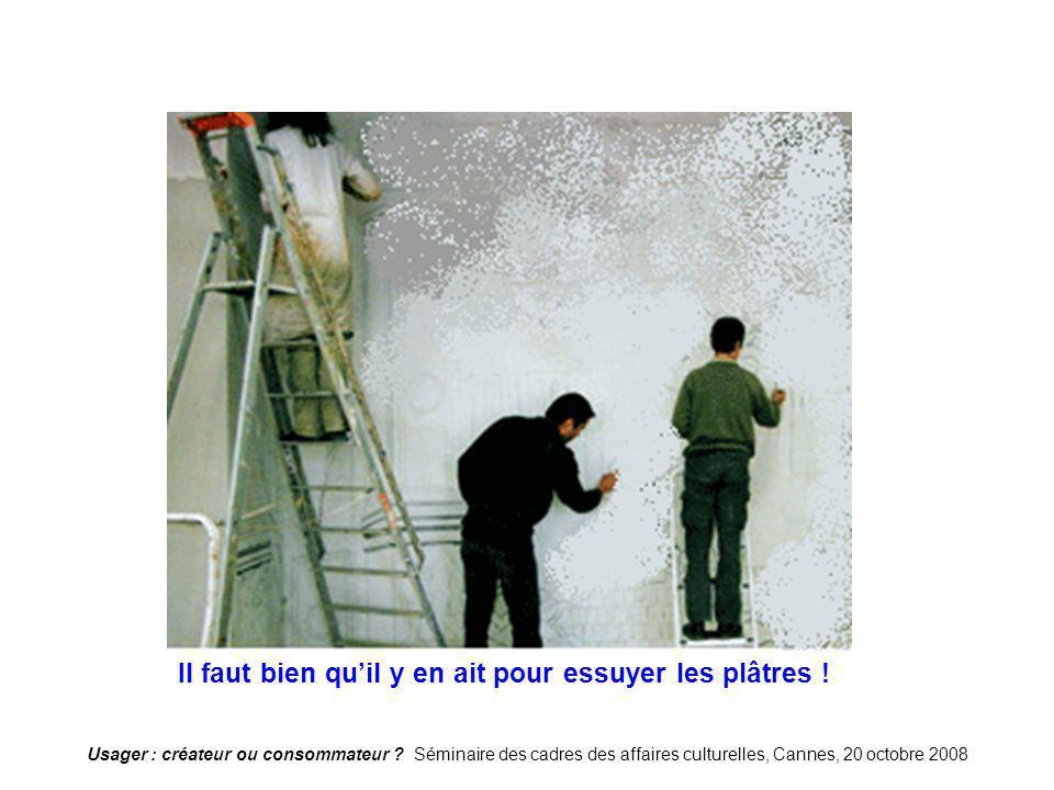 Usager : créateur ou consommateur ? Séminaire des cadres des affaires culturelles, Cannes, 20 octobre 2008 Plâtre Il faut bien quil y en ait pour essu