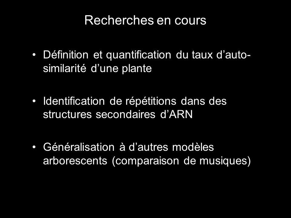Recherches en cours Définition et quantification du taux dauto- similarité dune plante Identification de répétitions dans des structures secondaires dARN Généralisation à dautres modèles arborescents (comparaison de musiques)