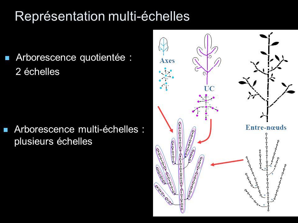 + + + + + + + Entre-nœuds + + + + + + + + Axes + + + + + < + + < < < < UC Représentation multi-échelles Arborescence multi-échelles : plusieurs échelles + + + + + + + < < < < Arborescence quotientée : 2 échelles