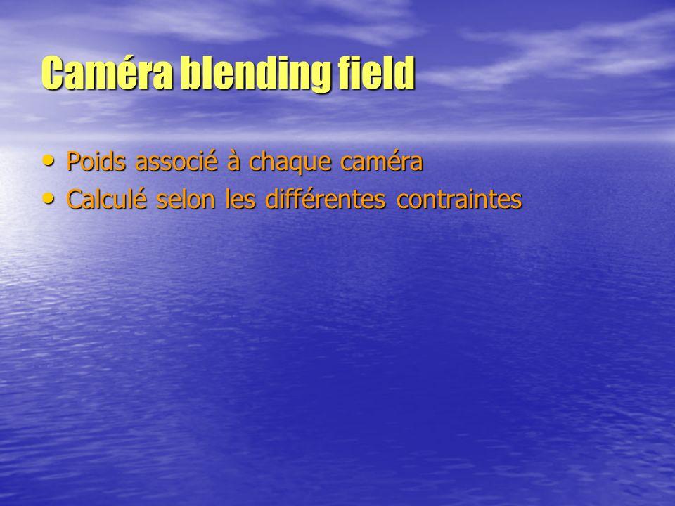 Caméra blending field Poids associé à chaque caméra Poids associé à chaque caméra Calculé selon les différentes contraintes Calculé selon les différen